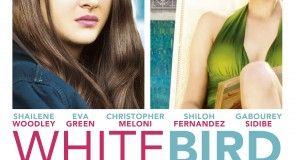 #Deauville2014 : Une affiche pour White Bird, le nouveau film de Gregg Araki