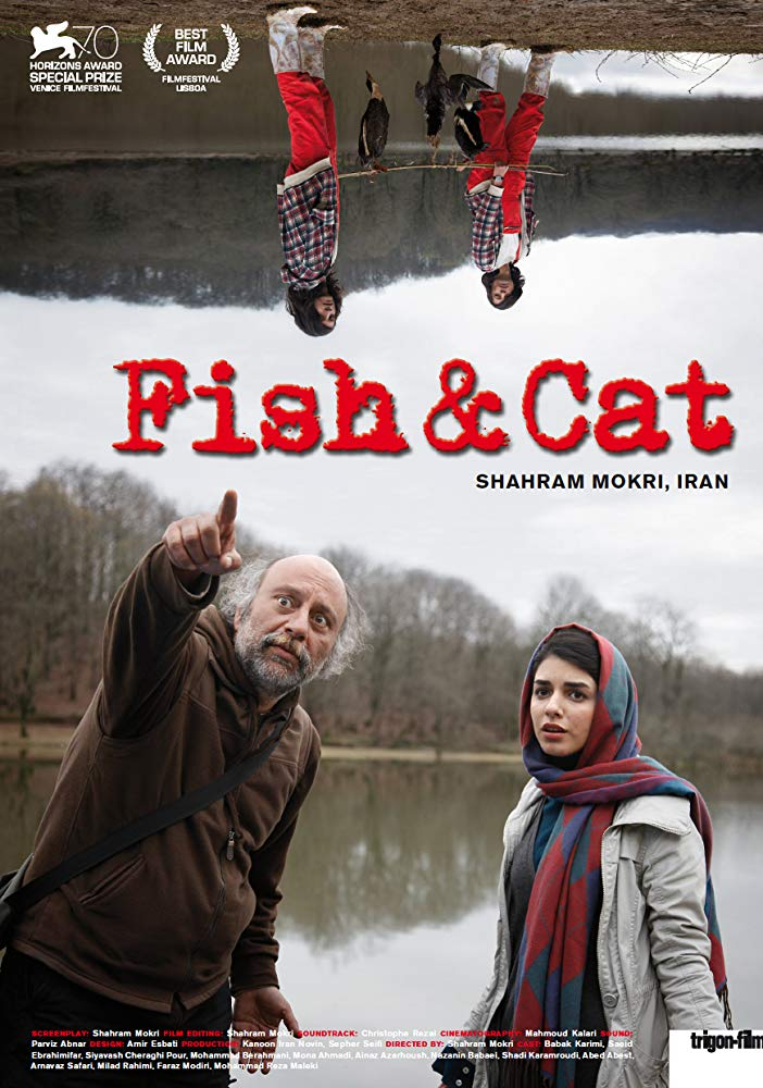 Fish and Cat