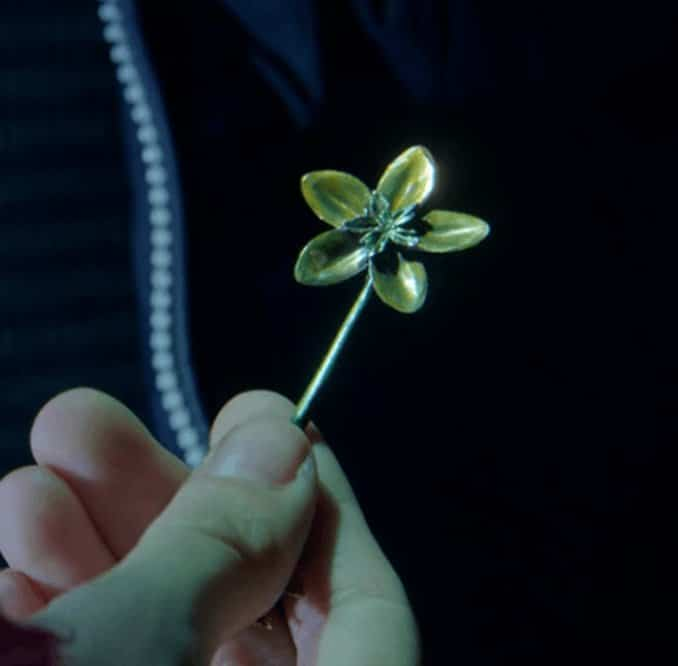 locke-key-plant_flower_key_fleur_plante2