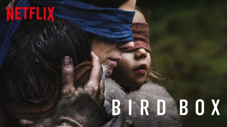 film bird box