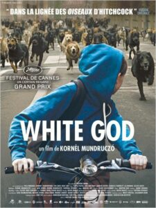 white_god_affiche